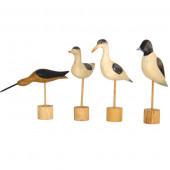 Oiseaux bois